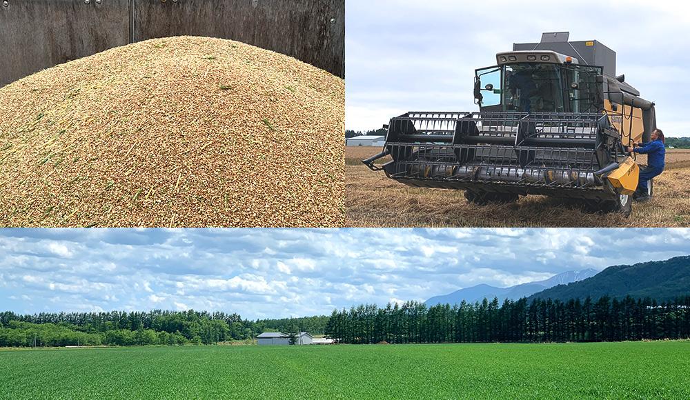 日本一の農業地域「北海道十勝」にて、生産者様を訪問し、様々な体験